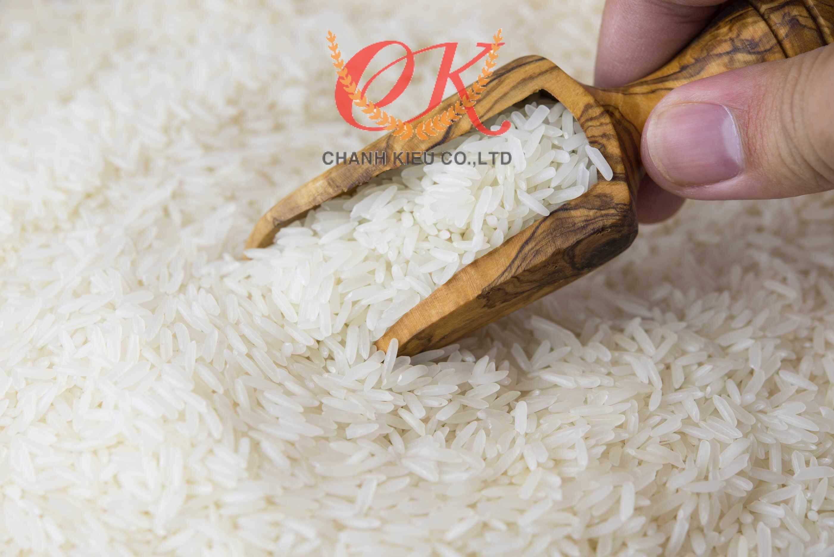 gao-tai-nguyen-cho-dao