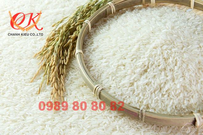 gạo lúa vàng mềm thơm ngon