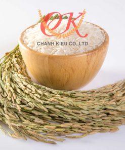 Gạo Lài Bún 2